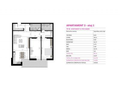 Apartament 3 - Aviatorii Residence II s009
